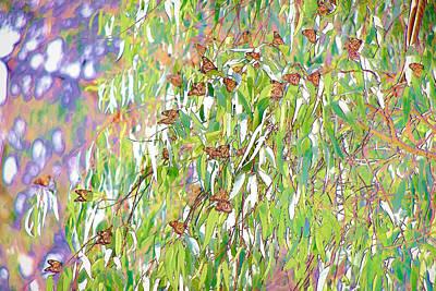 Natural Bridges State Beach Digital Art - Monarch Butterflies On Eucalyptus Branches by Priya Ghose