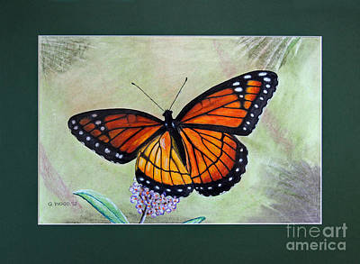 Photograph - Viceroy Butterfly By George Wood by Karen Adams