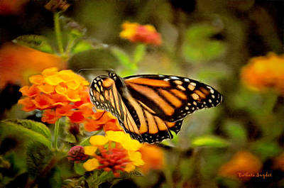 Painting - Monarch Butterfly Grove by Barbara Snyder