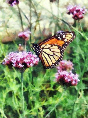 Monarch Butterfly On Pink Lantana Art Print by Susan Savad