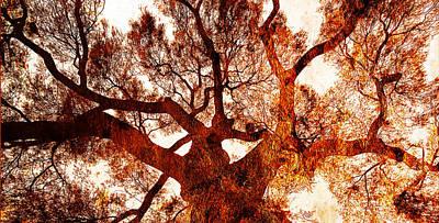 Monarch Red Tree Original