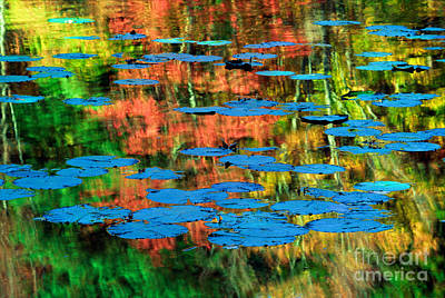 Monet Reflection Art Print