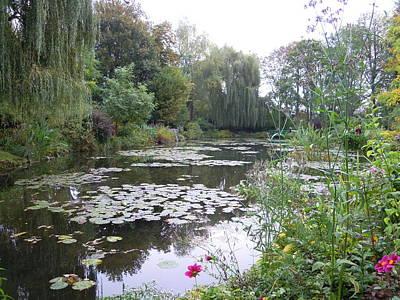 Photograph - Monet's Garden 1 by Ellen Meakin