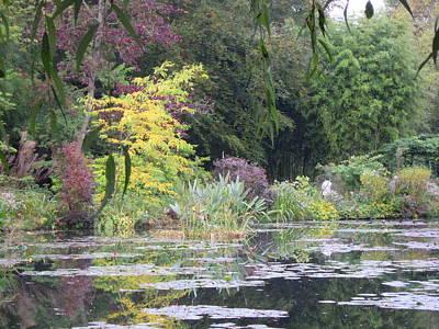 Photograph - Monet's Garden 4 by Ellen Meakin