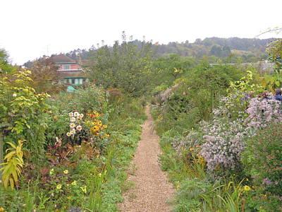 Photograph - Monet's Garden 5 by Ellen Meakin