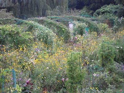Photograph - Monet's Garden 8 by Ellen Meakin