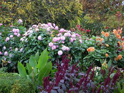 Photograph - Monet's Garden 9 by Ellen Meakin