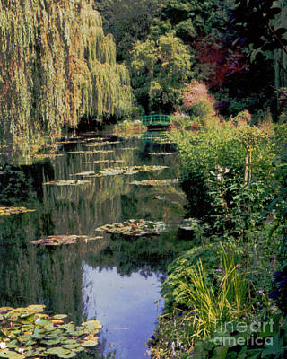 Photograph - Monet's Lily Pond by Patricia Januszkiewicz