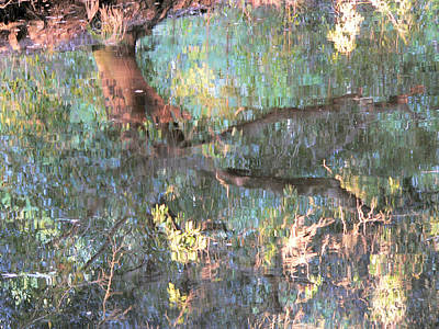 Photograph - Monets Mississippi by Kathy K McClellan