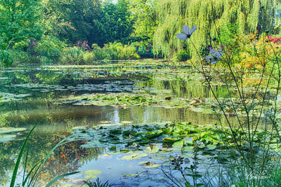 Photograph - Monet's Water Lily Garden by Diana Haronis