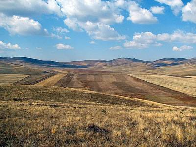 Photograph - Mongolian Fields by Diane Height