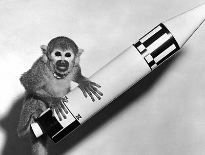 Rocket Science Photograph - Monkey Baker With Jupiter by Underwood Archives