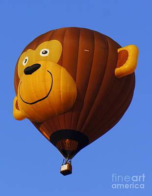 Photograph - Monkey Hot Air Balloon by Rachel Munoz Striggow