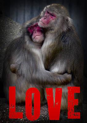 I Love U Forever Digital Art - Monkey Love by Daniel Hagerman