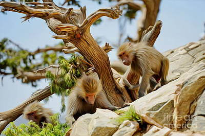 Photograph - Monkeys On Mountain by George Paris