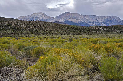 Mono Basin Lee Vining 1 Art Print