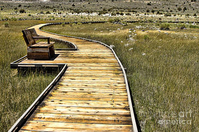 Mono Lake Boardwalk  Art Print