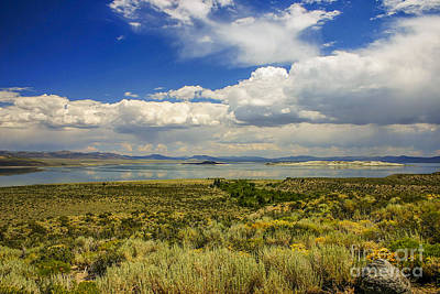 Claude Monet - Mono lake in California by Patricia Hofmeester