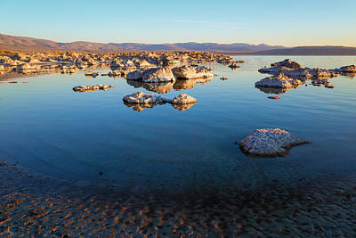Photograph - Mono Lake Morning by Priya Ghose