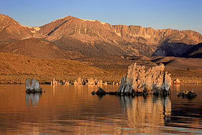 Vermeer Rights Managed Images - Mono Lake Sunrise 2012 Royalty-Free Image by Ralph Nordstrom