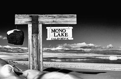 Photograph - Mono Lake Vista by Cat Connor