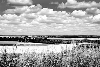 Mono Landscape Original