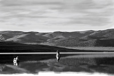 Photograph - Mono Zones Bw by Denise Dube