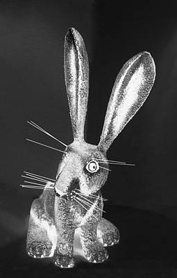 Photograph - Monochrome Light New Mexico Rabbit by Rob Hans