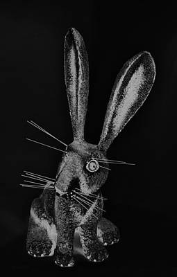 Photograph - Monochrome New Mexico Rabbit by Rob Hans