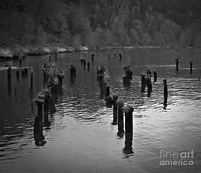 Photograph - Monochrome Pilings by Chalet Roome-Rigdon