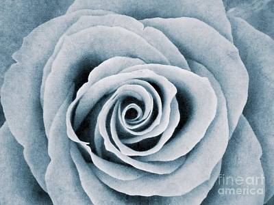 Photograph - Monochrome Rose by Joan-Violet Stretch