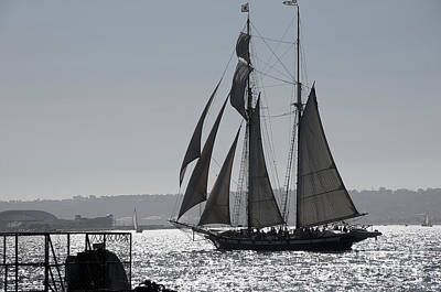 Photograph - Monotone Sailing by Brenda Kean