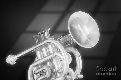 Cornet Photograph - Monotone Trumpet by M K  Miller