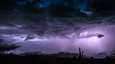 Monsoon Madness Art Print by Stacy LeClair
