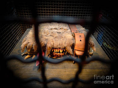 Monster Photograph - Monster Book Of Monsters By Edwardus Lima by Edward Fielding