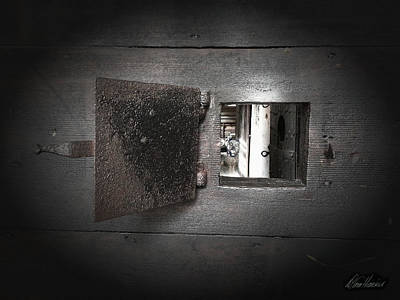 Photograph - Escape From The Asylum by Diana Haronis