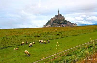 Photograph - Mont Saint Michel With Sheep by Diana Haronis