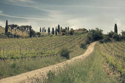 Winery Photograph - Montalcino - Tuscany by Joana Kruse