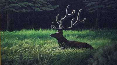Montana Morning Art Print by Dan Parsons