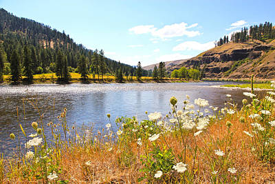 Photograph - Montana Mountains And River by Athena Mckinzie