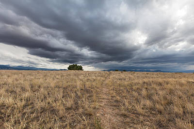 Photograph - Montana Skies by Fran Riley