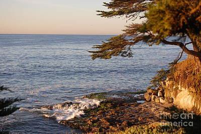 Photograph - Monterey Bay by Garnett  Jaeger
