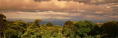 Monteverde Puntarenas Province Costa Art Print by Panoramic Images