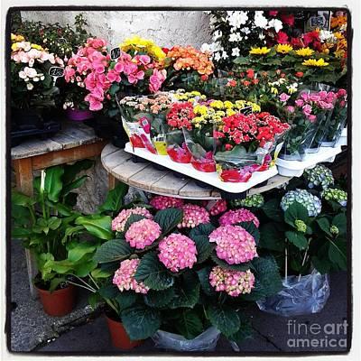Photograph - Montpellier Flower Shop by Victoria Herrera