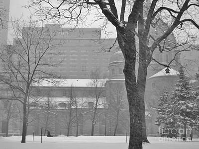 Photograph - Montreal In Snow by Reb Frost