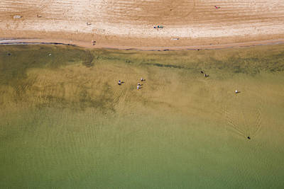 Abstract Beach Landscape Photograph - Montrose Beach Dog Park by Adam Romanowicz