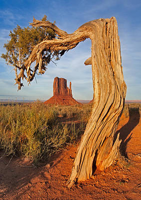 Photograph - Monument Valley Classic by Susan Candelario