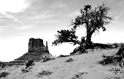 Digital Art - Monument Valley Tree And Monolith Scenic Landscape Black And White Conte Crayon Digital Art by Shawn O'Brien