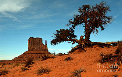 Photograph - Monument Valley Tree And Monolith Scenic Landscape Black And White Watercolor Digital Art by Shawn O'Brien