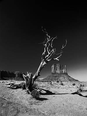 Mesa Photograph - Monument by Vinicio Triglia